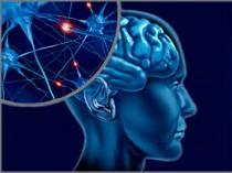 «Каммед» на Конференции нейрохирургов Украины